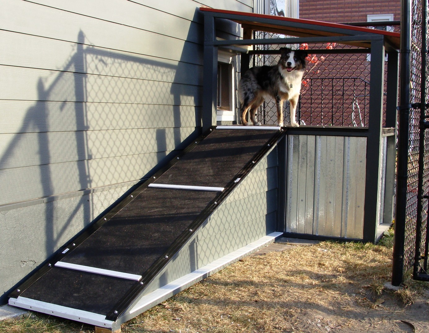 After - Dog Deck Ramp